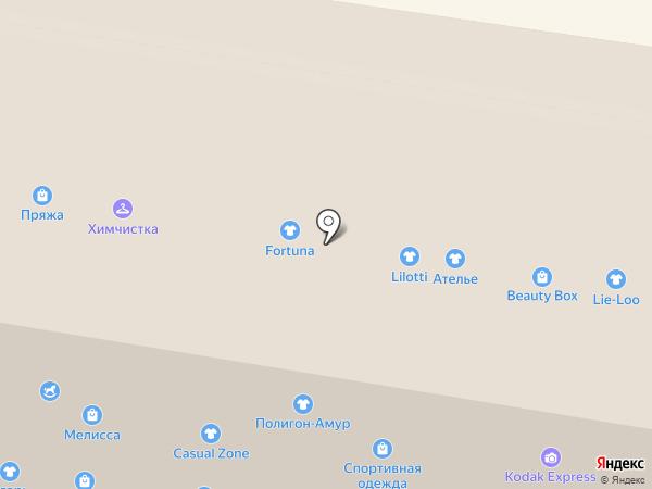 Kodak на карте Благовещенска