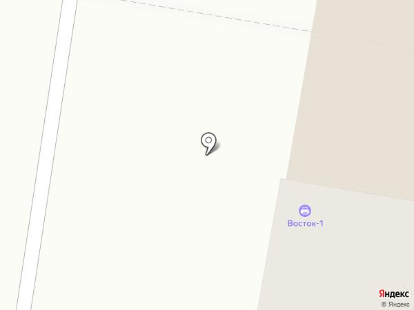 Восток-1 на карте Благовещенска
