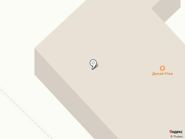 Дикая утка на карте Якутска
