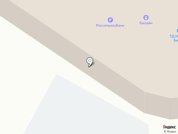 ДНС на карте Нижнего Бестях