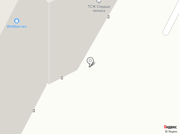 Доктор Елистратов на карте Владивостока