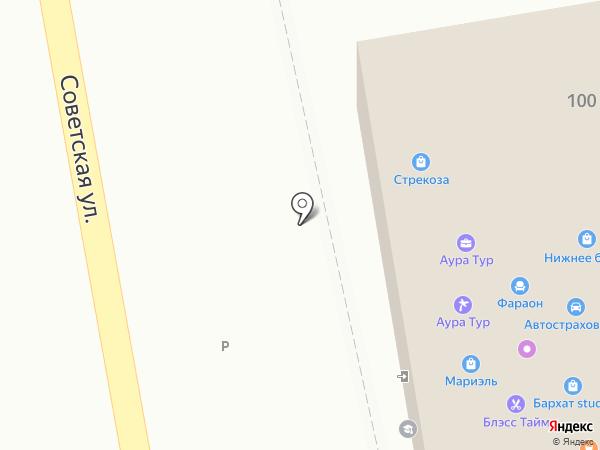 Стрекоза на карте Уссурийска