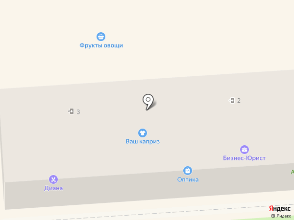 Диана на карте Уссурийска