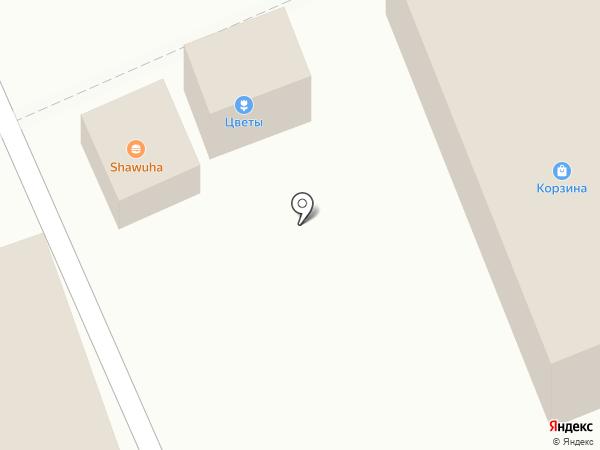 SKOOTER MAX на карте Артёма