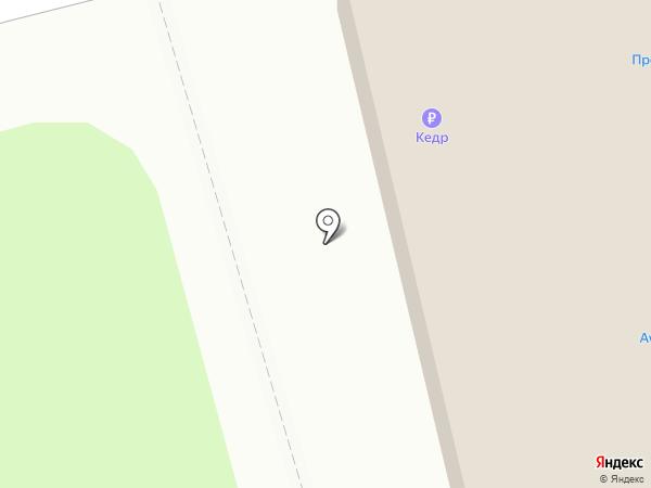 Магазин хозяйственных товаров на карте Артёма