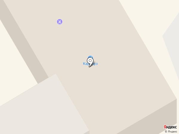 Каталея на карте Находки