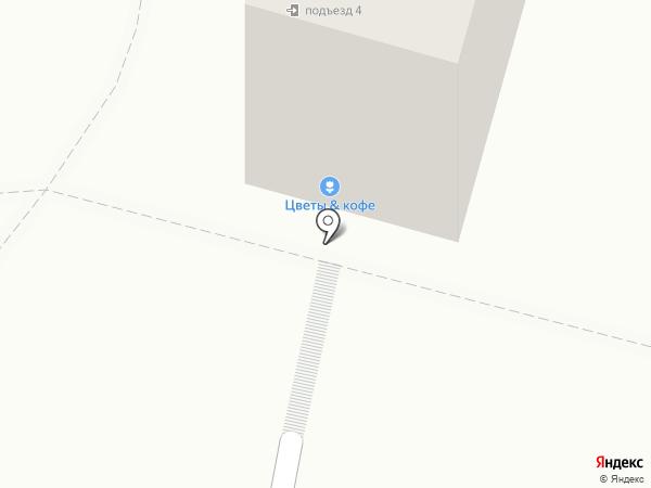 Роза Ветров на карте Находки