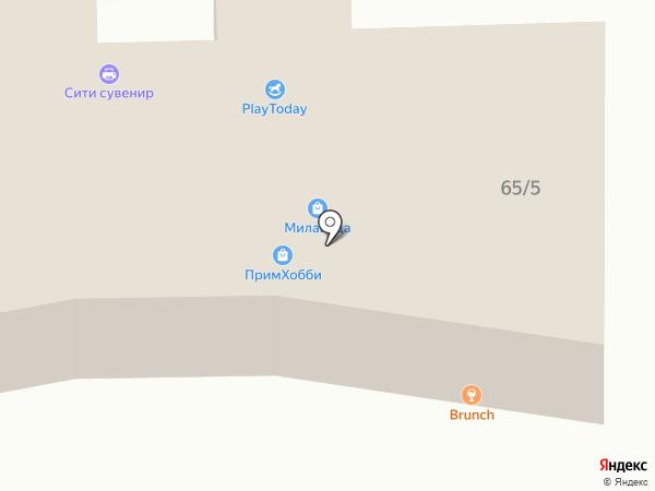33 Пингвина на карте Находки