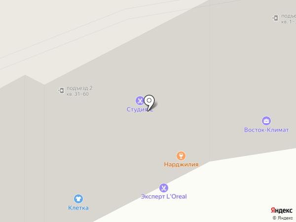 Массис на карте Находки