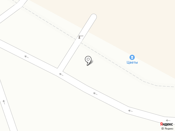 Примроза на карте Находки