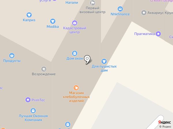 ДНС на карте Находки