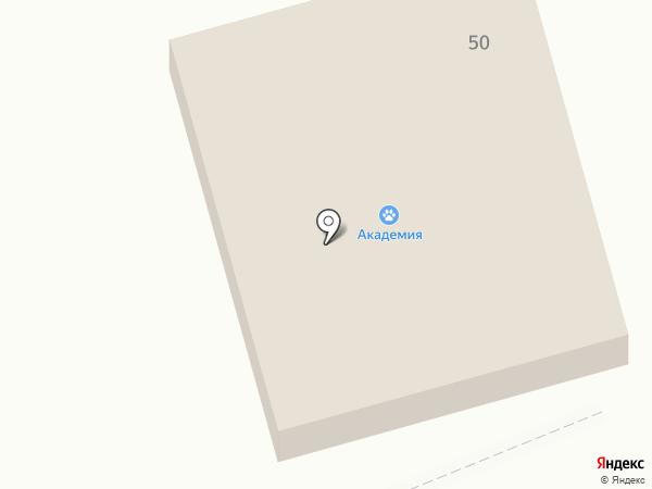 Сопка на карте Находки