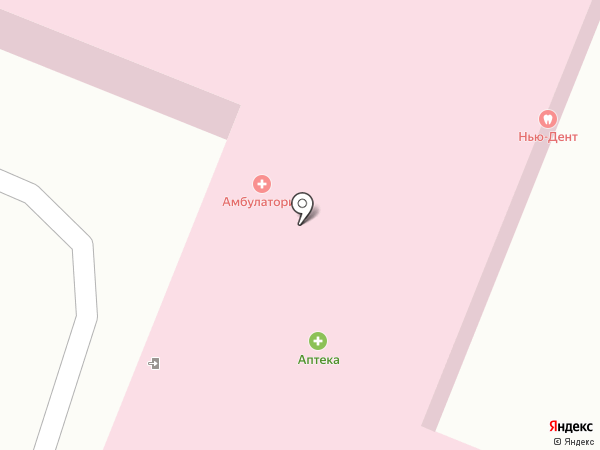 Приамурская врачебная амбулатория на карте Приамурского