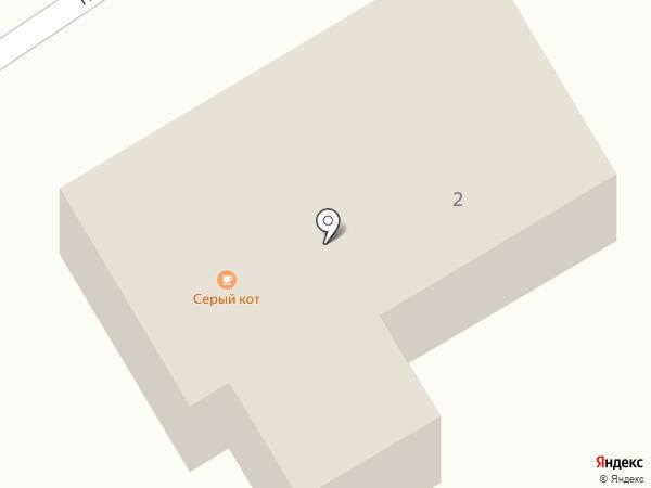 Серый кот на карте Сосновки
