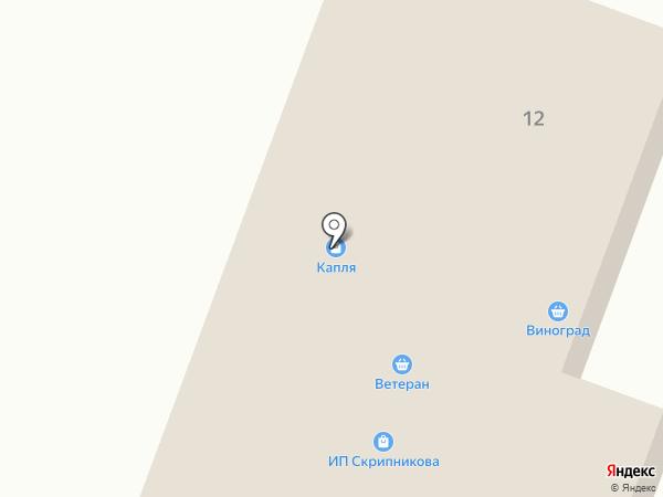 Капля на карте Амурска