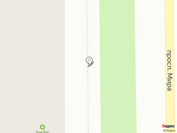 Ветеринарная аптека на карте Амурска