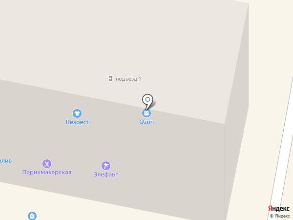 Элефант на карте Амурска
