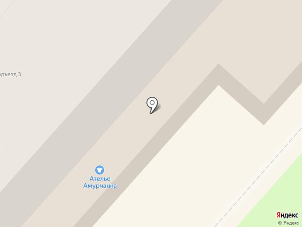 Мика на карте Амурска