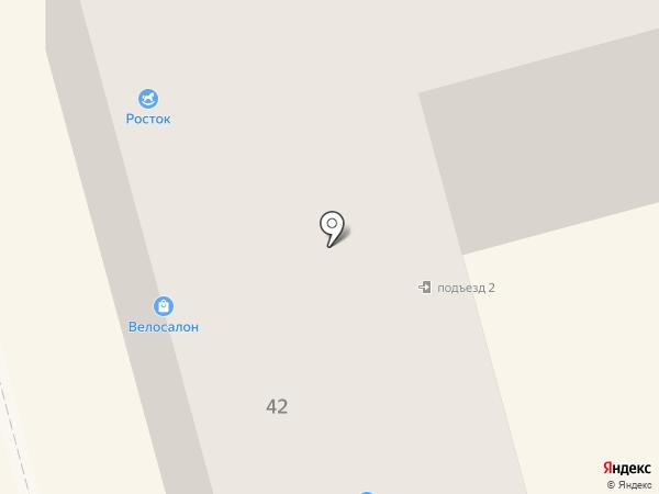 Жук на карте Комсомольска-на-Амуре