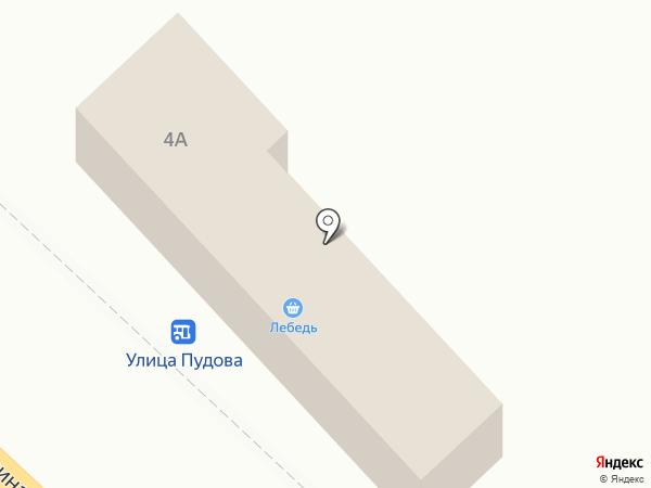 Лебедь на карте Анивы