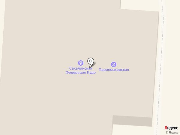 Электрон на карте Долинска
