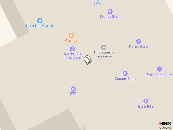 СИТИ на карте Елизово
