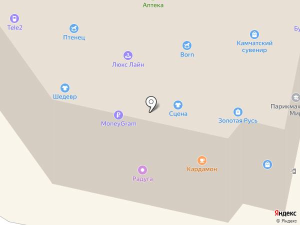 Сороконожка на карте Елизово