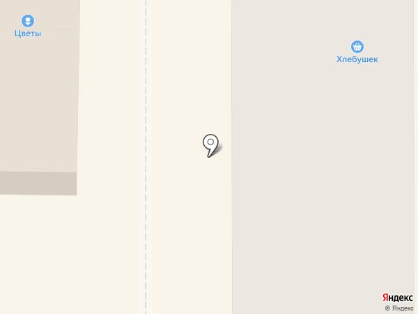 Андраник на карте Вилючинска
