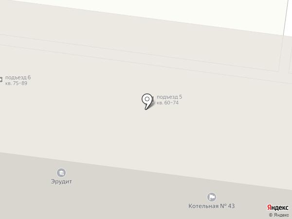 Пальма на карте Петропавловска-Камчатского