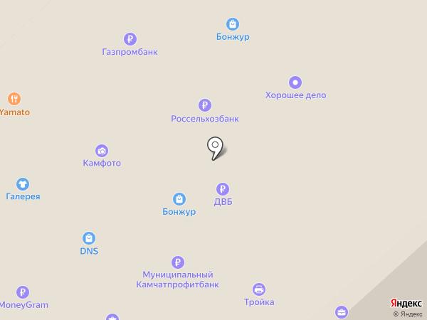 ПИТ на карте Петропавловска-Камчатского