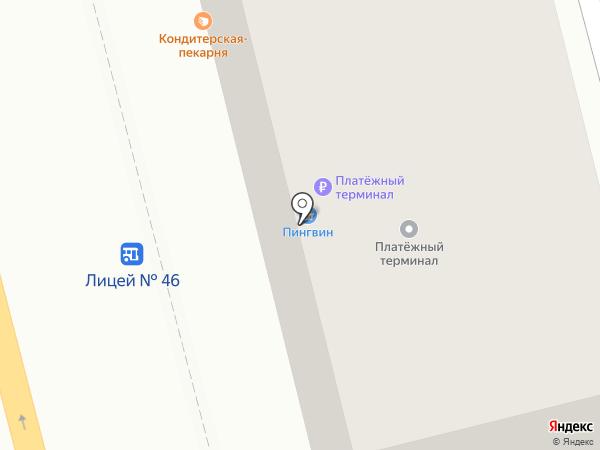 Пингвин на карте Петропавловска-Камчатского