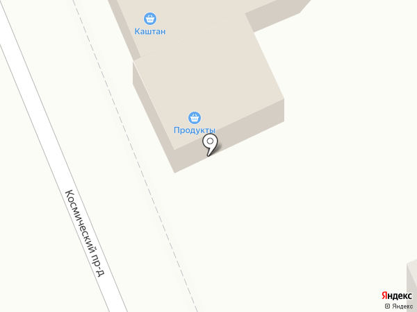 Каштан на карте Петропавловска-Камчатского
