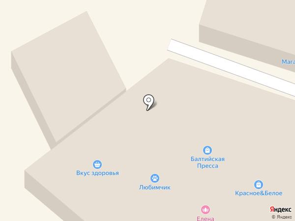 Карапуз плюс на карте Светлого