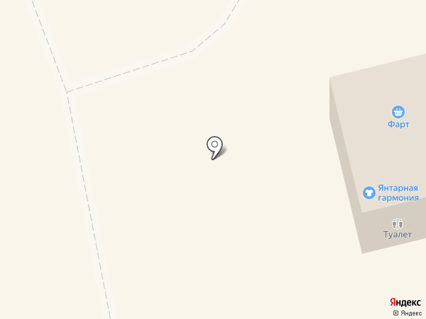 Янтарная гармония на карте Светлогорска