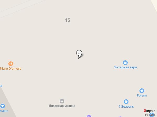 Вайтнауэр-Филипп на карте Светлогорска
