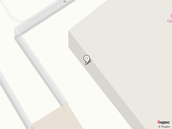 Махараджа на карте Светлогорска