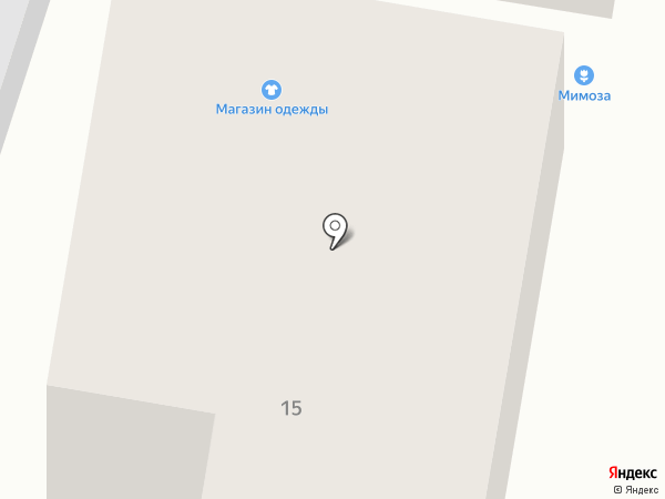 Мимоза на карте Светлогорска