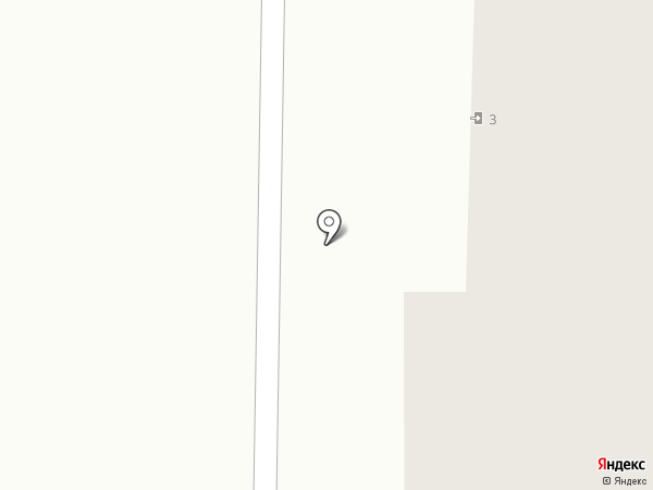 Ананас на карте Светлогорска