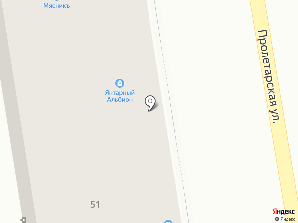 Янтарный Альбион на карте Калининграда