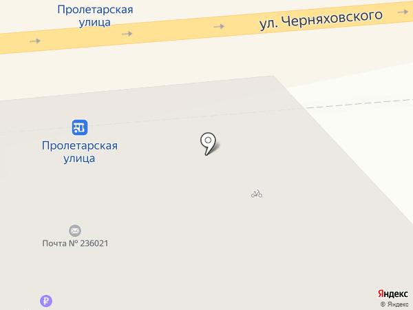 Pita Bull на карте Калининграда