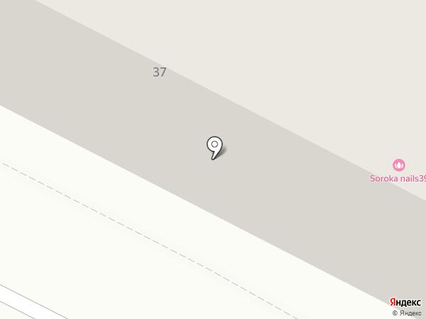 Ромашка на карте Калининграда