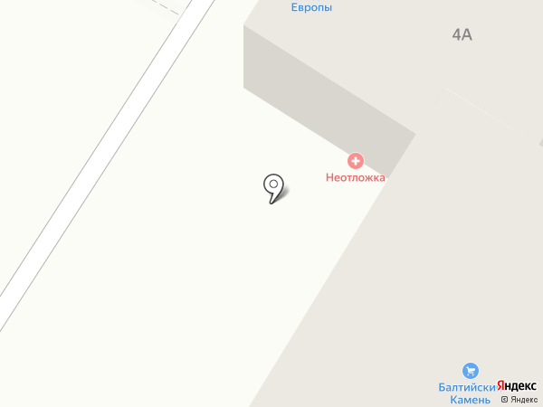 Калининградская неотложка на карте Васильково