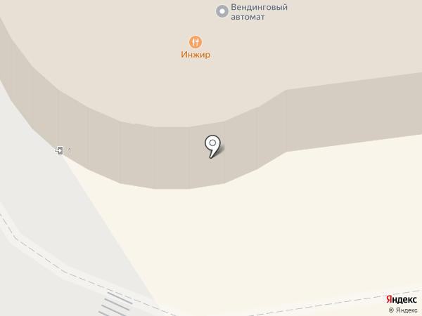 Инжир на карте Пскова