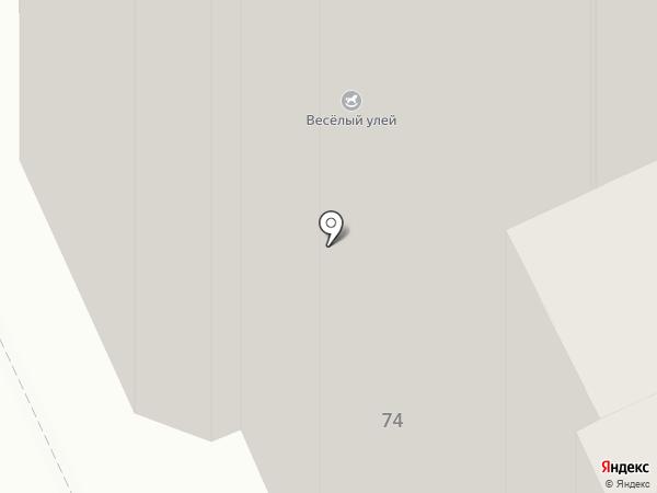 Веселый улей на карте Пскова