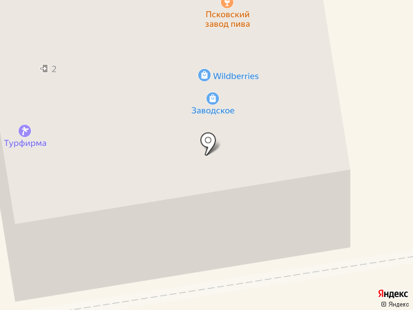Torex на карте Пскова