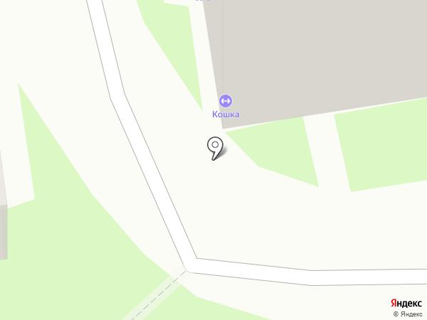 Кошка на карте Пскова
