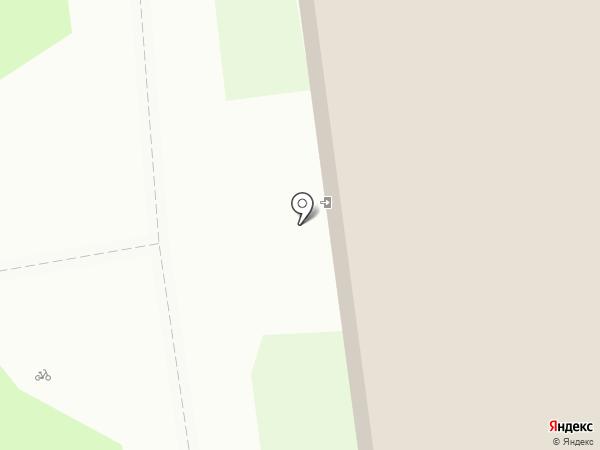 Барс на карте Пскова