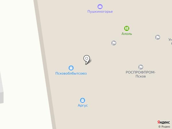 Беккер Окна на карте Пскова