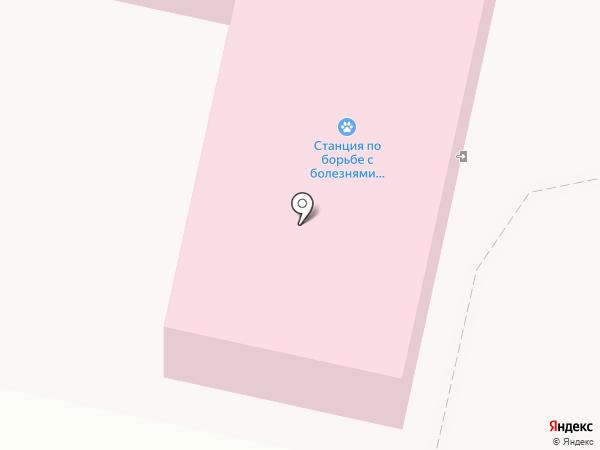 Псковская городская станция по борьбе с болезнями животных на карте Пскова