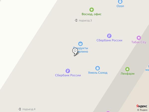 Аэродром на карте Гатчины